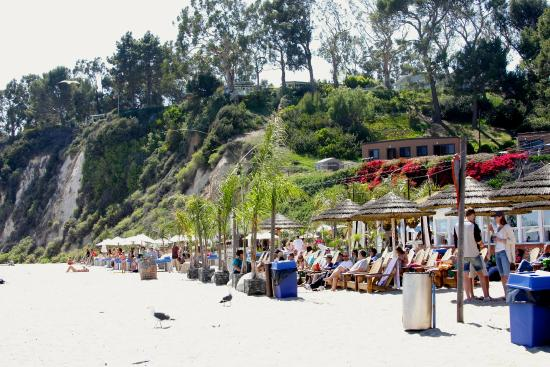 access picture of paradise cove beach cafe malibu tripadvisor