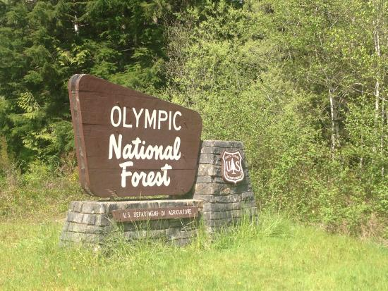The sign picture of olympic national park and forest for Cabin rentals olympic national forest