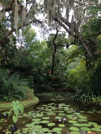 So Relaxing Picture Of Mckee Botanical Garden Vero