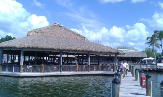 Imfc pier picture of islamorada fish company islamorada for Islamorada fish company