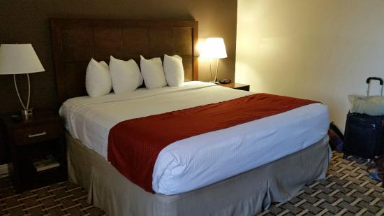 Howard Johnson Los Angeles/Near Convention Center: The very comfortable bed. Loved those little pillows!