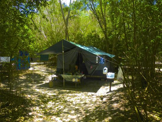 Virgin Islands Campground Tripadvisor