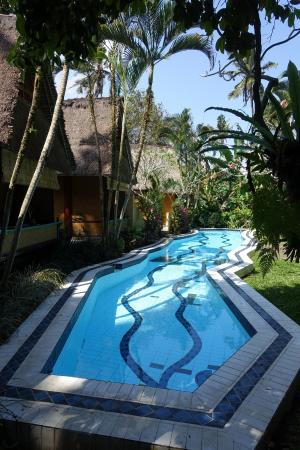 Shankari'S Bali Retreat