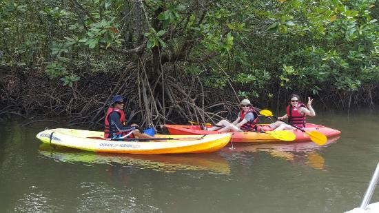 Langkawi Mangrove Tour by Bard