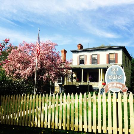 Borland House Bed and Breakfast