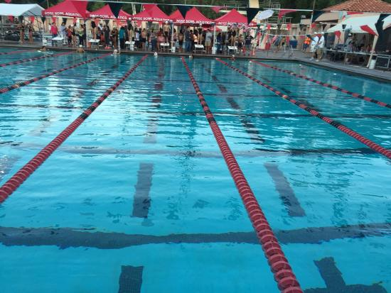 Competition Pool In The Evening Picture Of Pasadena California Tripadvisor