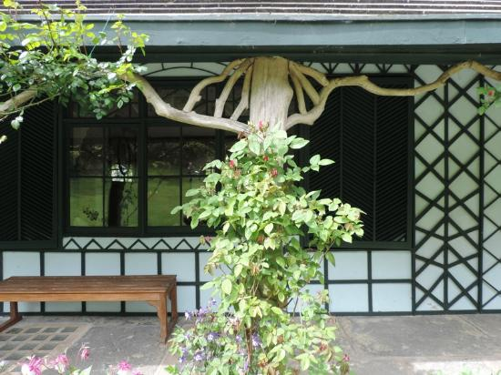Nature theme outside picture of swiss cottage cahir tripadvisor - Serene traditional cottage in natural theme ...