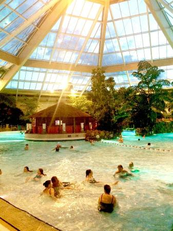 View from the room picture of center parcs elveden Center parcs elveden forest swimming pool