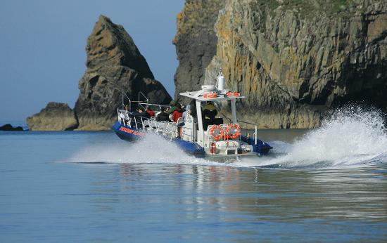Ramsey Island RSPB Nature Reserve Tours -Thousand Islands Expeditions