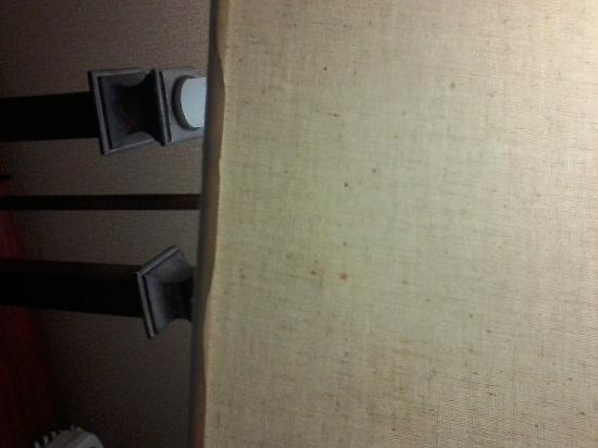 Radisson Hotel Cleveland Airport West: Blood stained desk lamp shade
