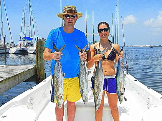 King mackerel picture of last local guide service for Fishing report panama city