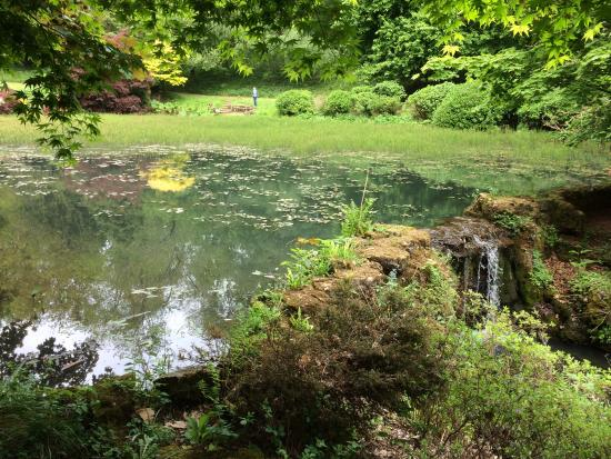 Lydney United Kingdom  City new picture : Lydney Park Estate Picture of Lydney, Forest of Dean TripAdvisor