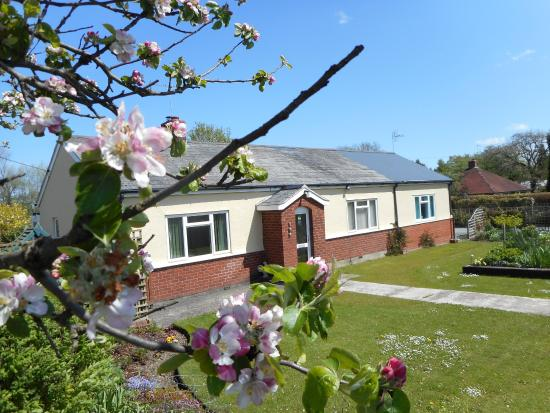 Hafod Self Catering Holidays