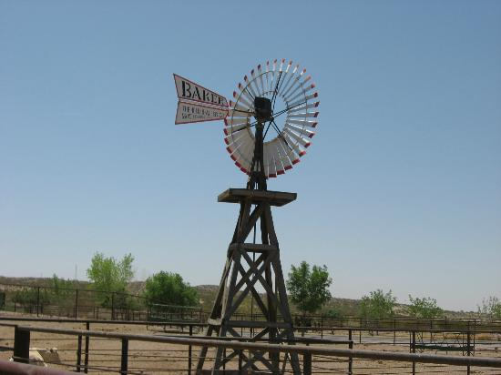 New Mexico Farm and Ranch Heritage Museum: Windmill at the New Mexico Farm and Ranch