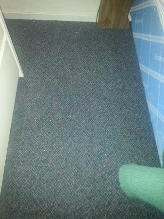Cobb, CA: Paint chips all over the carpet.  Clearly not vacuumed.