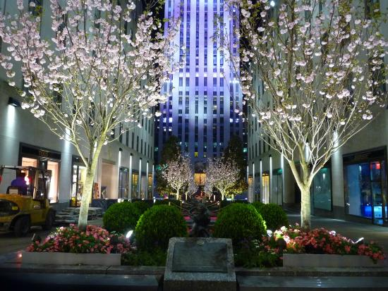 The Spectacular Rockefeller Centre After Dz 39 S After Party Picture Of Holiday Inn Express Nyc