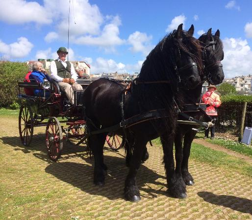 Carriage Hire Cornwall