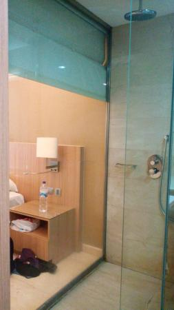 Novotel Surabaya Hotel and Suites: Invisible Shower