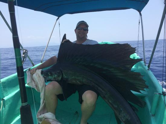 Guerrero, Μεξικό: a very large Sailfish