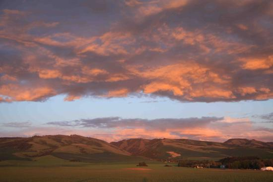 The beautiful Walla Walla Valley is home to more than 150 wineries