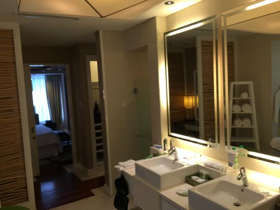 Another View Of The Bathroom Picture Of The Westin
