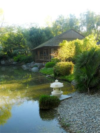 Maison de th picture of jardin japonais toulouse for Jardin japonais zen