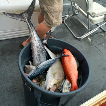 The daily catch picture of kelley fleet fishing miami for Hurricane fishing fleet