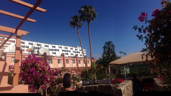 Pictures of jardin del sol apartments playa del ingles - Playa del ingles jardin del sol ...