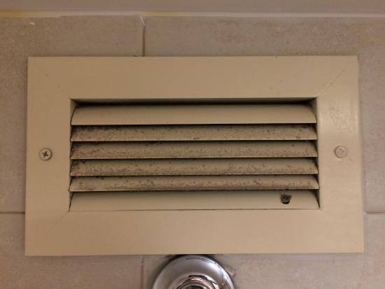 Bathroom air vent