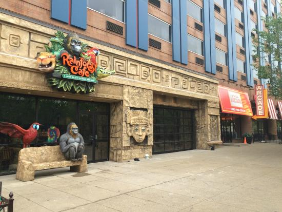 There Rainforest Cafe New York City
