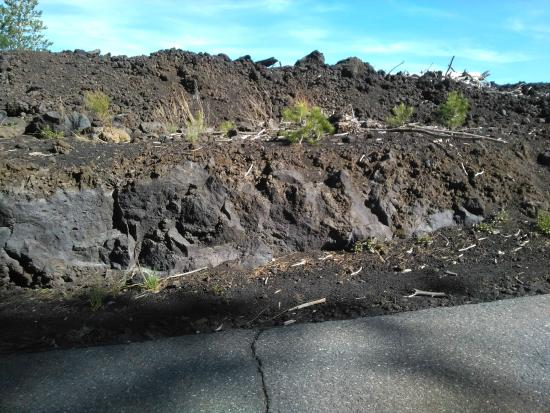 mt etna carbon dating How old is the earth by bodie hodge carbon-14 dates are determined from the measured ratio of date by (k-ar) radiometric dating mt etna basalt, sicily.