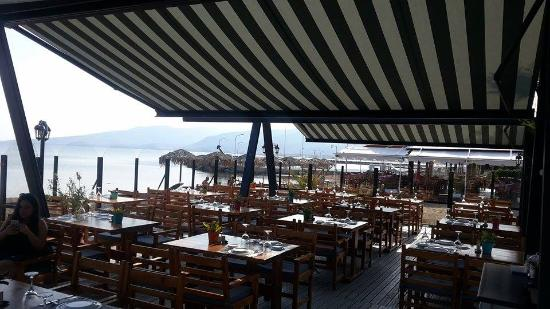 Caprice Kitchen Bar Picture Of Skala Kallonis Lesbos