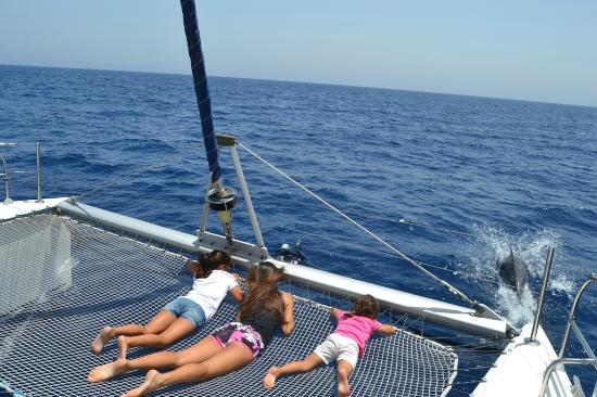 1 - Picture of Oby Catamaran, Antigua - TripAdvisor