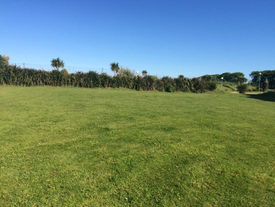 Our Dog On The Grass In The Dog Walking Area Picture Of Atlantic Reach New