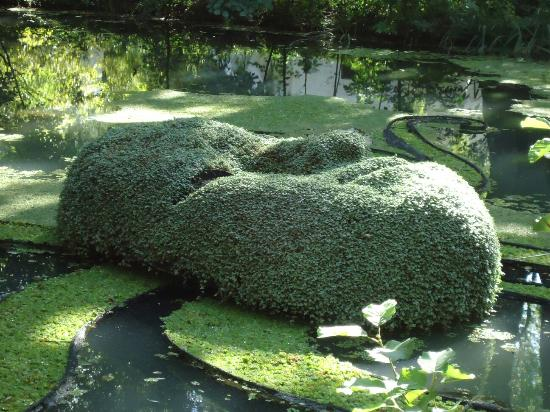 Jardin Botanique de Montreal - Picture of Montreal Botanical Gardens, Montreal - TripAdvisor