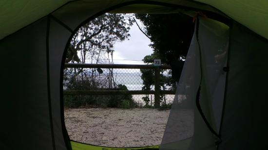 North Coast Holiday Parks Clarkes Beach: Powered Site View