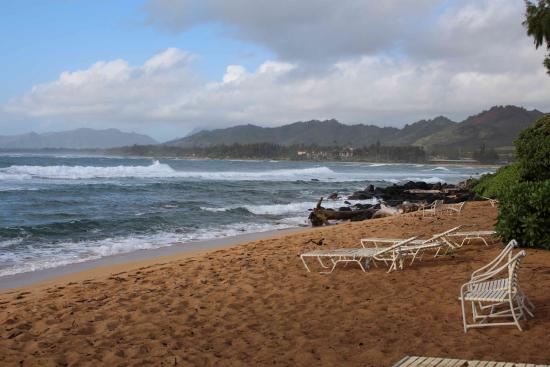 Kauai Shores An Aqua Hotel Reviews