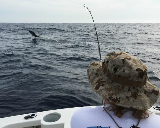 Fish on picture of pisces sportfishing cabo san lucas for Pisces fishing cabo