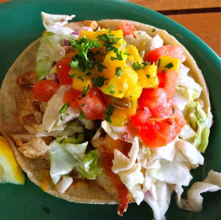 Best fish tacos evah picture of coconut 39 s fish cafe for Coconut s fish cafe