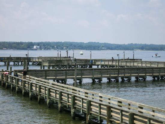 Nice long pier picture of solomons boat ramp and fishing for Maryland fishing piers