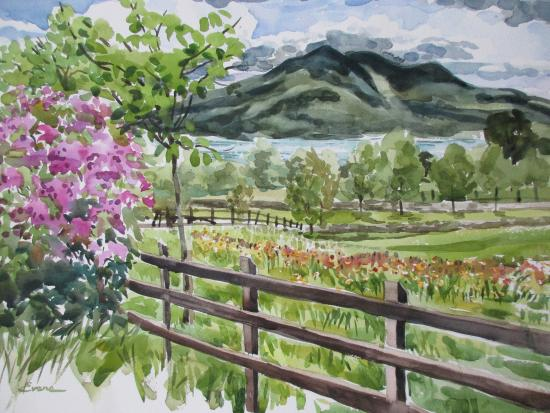 Painting I did of mountain/lake view from Carriglea House property