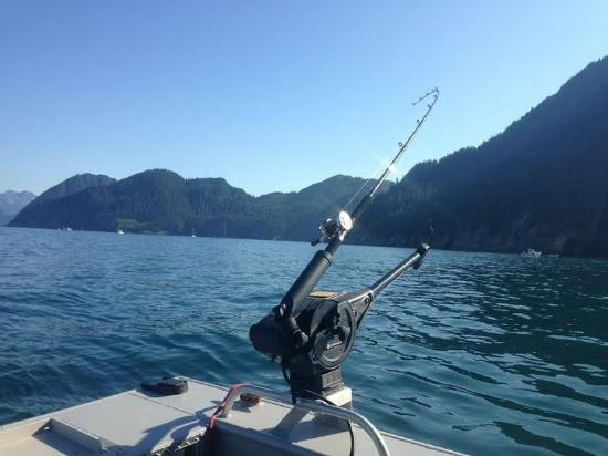 Fishing gear for Fishing in anchorage