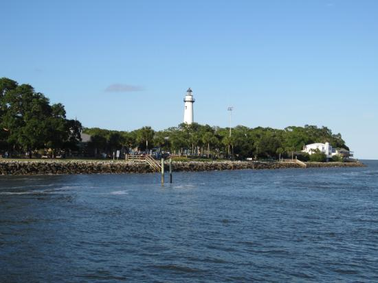 We saw dolphins from the pier at sunset even in the for St simons island fishing