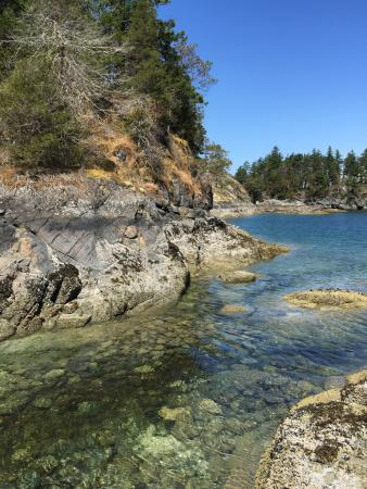 Halfmoon Bay, Канада: A really nice hike over boardwalk to a really pretty cove... The color of the water is spectacul