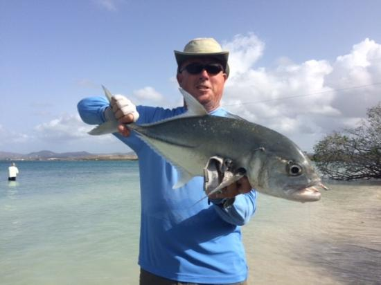 Tarpon on fly picture of st croix inshore fishing for Virgin islands fishing
