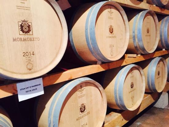 Pelago, Italy: Wine casks in the first 8 months of aging