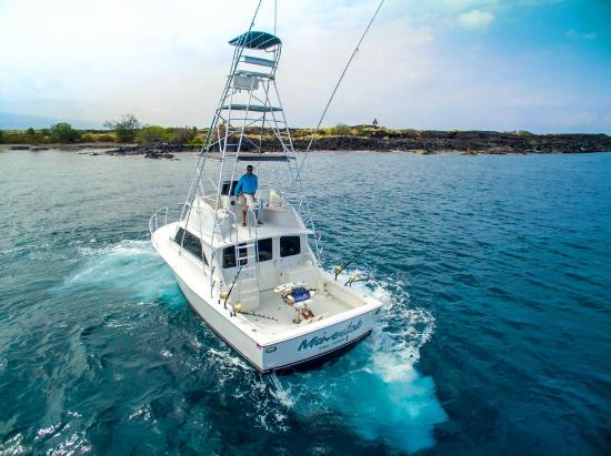 Fishing picture of maverick sportfishing kona kailua for Kona sport fishing