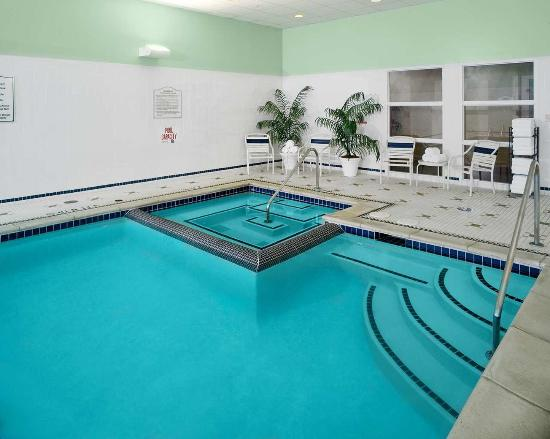 Indoor Pool Picture Of Hilton Garden Inn Detroit Downtown Detroit Tripadvisor