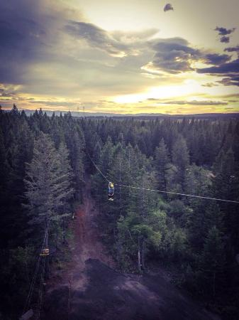 Columbia Falls, Монтана: Beautiful view from the tower at Glacier ZipLines