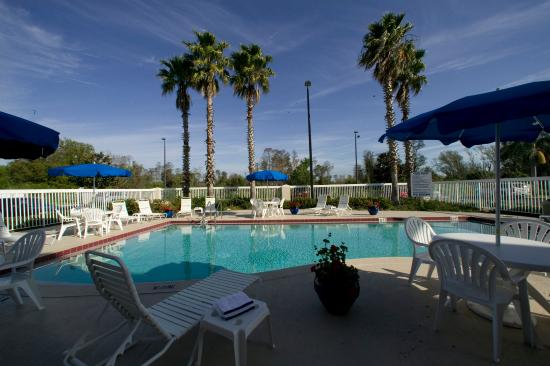 Swimming Pool Picture Of Holiday Inn Express Orlando Airport Orlando Tripadvisor